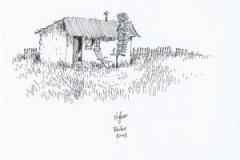 Nylso-2013